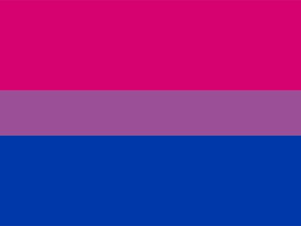 bandera bisexual colores