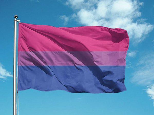bandera bisexual comprar online