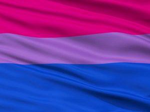 bandera bisexual gran formato comprar online