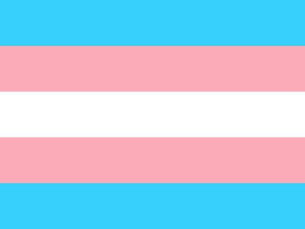 bandera transgenero colores comprar tienda online